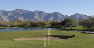 Golf Club at Vistoso tucson az