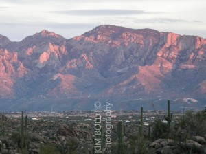 Catalina Ridge Subdivision Tucson Arizona