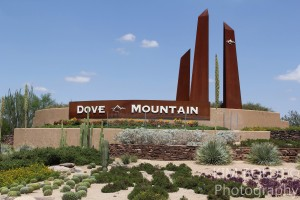 Dove Mountain Home Sales January 2016