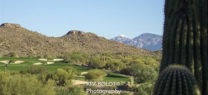 Gallery golf club tucson az
