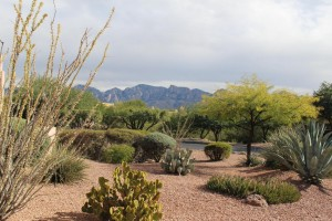 Moonridge oro Valley Subdivision