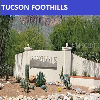 mlssaz property search tucson foothills