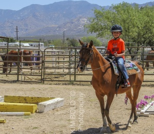 Tucson Horse Property sales June 2017